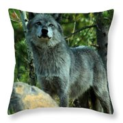 North American Wolf  Throw Pillow