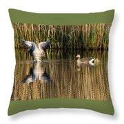 Greylag Goose Family Throw Pillow