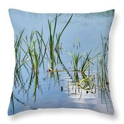 Greylake Reflections Throw Pillow