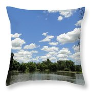 Griffin Lake Throw Pillow