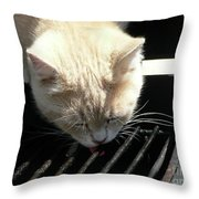 Grill Grate Gato Throw Pillow
