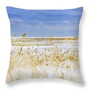 Grind Stone City Throw Pillow