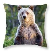 Griz Throw Pillow