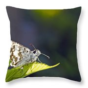 Grizzled Skipper Two Throw Pillow