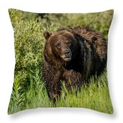 Grizzly 760 In The Morning Throw Pillow