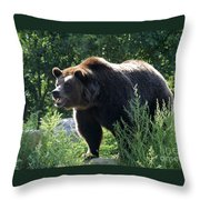 Grizzly-7756 Throw Pillow