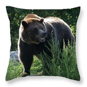 Grizzly-7759 Throw Pillow