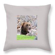 Grizzly Bear 02 Postcard Throw Pillow