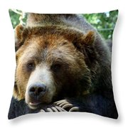 Grizzly Bear At Rest In Colorado Wildneress Throw Pillow