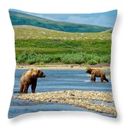 Grizzly Bear Communication In The Moraine River In Katmai  Np-ak Throw Pillow