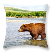 Grizzly Bear Determined To Catch A Salmon This Time In The Moraine River  Throw Pillow