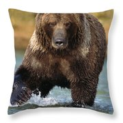 Grizzly Bear Female Looking For Fish Throw Pillow