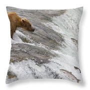 Grizzly Bear Fishing For Sockeye Salmon Throw Pillow