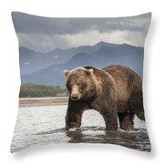 Grizzly Bear In River Katmai Np Alaska Throw Pillow
