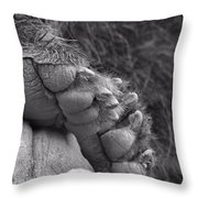 Grizzly Bear Paw Black And White Throw Pillow
