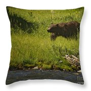 Grizzly Bear-signed-#1158 Throw Pillow