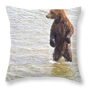 Grizzly Bear Standing To Get A Better Look In The Moraine River In Katmai Throw Pillow