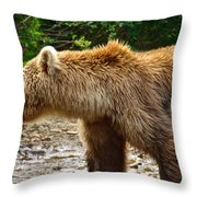 Grizzly Bear Very Close In Moraine River In Katmai National Preserve-ak Throw Pillow