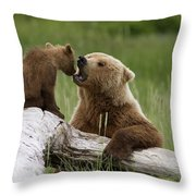 Grizzly Bear With Cub Playing Throw Pillow
