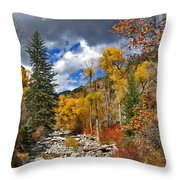 Grizzly Creek Cottonwoods Throw Pillow