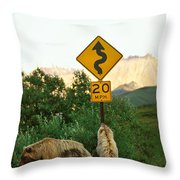 Grizzly Cubs Throw Pillow