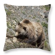 Grizzly Digging Throw Pillow