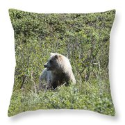 Grizzly One Throw Pillow