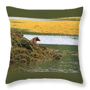 Grizzly Relaxing Throw Pillow