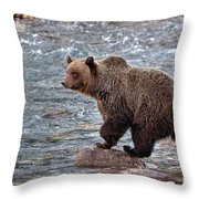 Grizzly River Throw Pillow