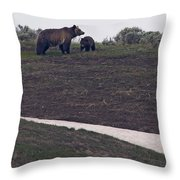 Grizzly Sow And 2nd Year Cub  #3241 Throw Pillow