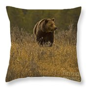 Grizzly Sow And Cub   #6365 Throw Pillow