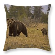 Grizzly Sow And Cub  #6382 Throw Pillow