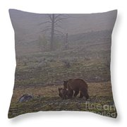 Grizzly Sow And Twins  #5817 Throw Pillow