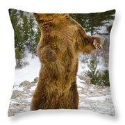 Grizzly Standing Throw Pillow