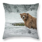 Grizzly Stare Throw Pillow