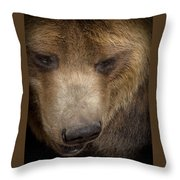 Grizzly Upclose Throw Pillow