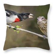 Grosbeak Gossip Throw Pillow