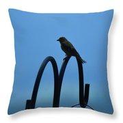 Grosbeak Silhouette Throw Pillow