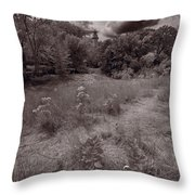Gross Point Beach Grasses Bw Throw Pillow