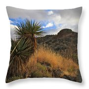 Grosvenor Hill Arizona Throw Pillow