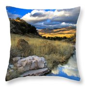 Grosvenor Hills 17 Miles North Of Mexico Throw Pillow