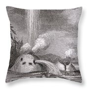 Grotto Geyser Yellowstone National Park Throw Pillow