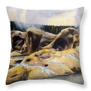 Grotto Geyser Yellowstone Np 1928 Throw Pillow