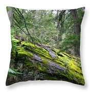 Ground Cover Throw Pillow
