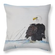 Ground Eagle Throw Pillow