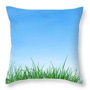 Ground Grass And Sky Throw Pillow