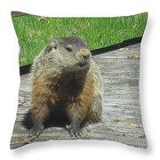 Groundhog Holding A Stick Throw Pillow