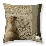 Groundhog With Shadow Throw Pillow