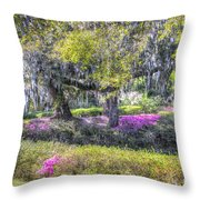 Grounds Of Middleton Throw Pillow