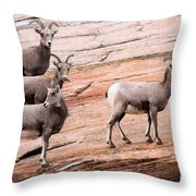 Group Leader Throw Pillow